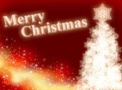 メリークリスマス!!の盛り上がり方 〜施設を持たない介護屋さん〜